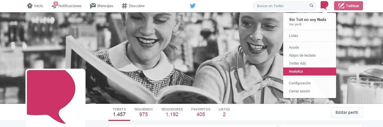 Analizar perfil Twitter