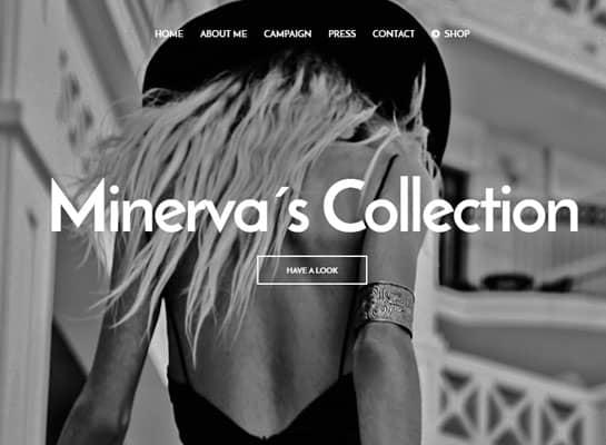 Minerva's Collection